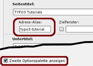 Alias-Feld in TYPO3 Seiteneigenschaften